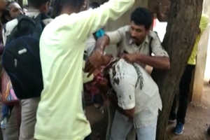 छत्तीसगढ़: कोर्ट में पेशी के दौरान कांग्रेस नेताओं ने की हरीश वर्मा की पिटाई